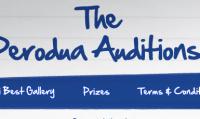 Perodua Auditions